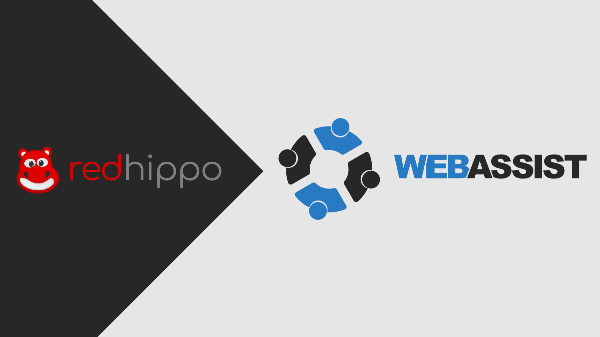 Rebrand Redhippo is now Web Assist Fi