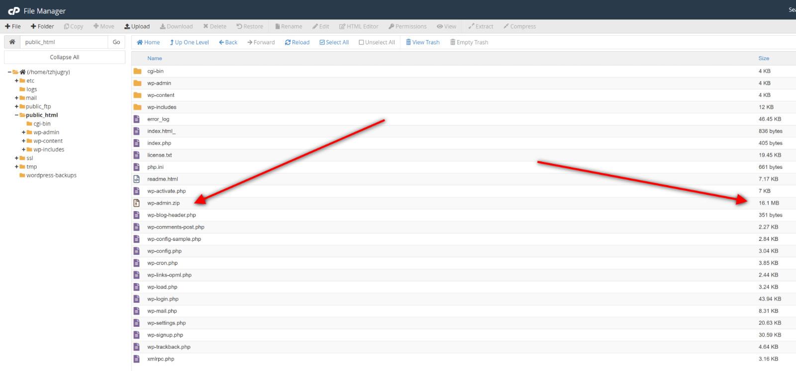 Wordpress Backup Cpanel Download Website Files 1